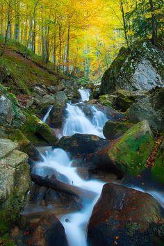 Sipote - Mountain river