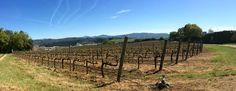Enjoying Navarra