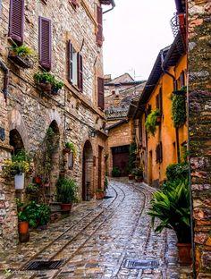 Spello - Italy by Vittorio Delli Ponti on 500px