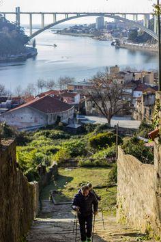Subindo pelo Porto www.webook.pt #webookporto #porto