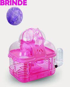 Hamster Doce Hamster: Top 10 - Melhores e piores gaiolas