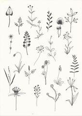 Stickmuster, Muster, Blume – # pattern – New Tattoo Models - Pflanzen Ideen Leaf Drawing, Floral Drawing, Plant Drawing, Cute Flower Drawing, Simple Flower Painting, Botanical Line Drawing, Drawing Flowers, Mini Tattoos, New Tattoos