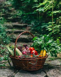 Veggies in a basket by Jen Grantham - Basket, Produce - Stocksy United Photo Fruit, Vegetable Basket, Fruits Photos, Garden Basket, Market Baskets, Down On The Farm, Healthy Fruits, Fruit And Veg, Amazing Flowers