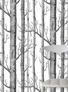 Papier peint Birch Forest Mat Arbres Blanc Noir