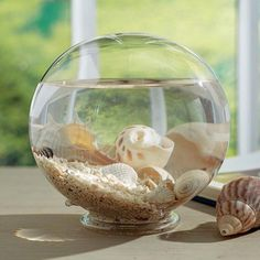 The Tidal Pool Glass Globe is a the beach version of a snow globe.