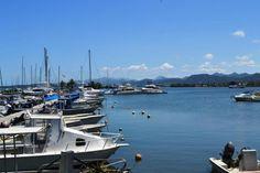 Fidji | Die seiljagklub in Suva