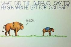 For when Jacob leaves for Harding (the Bisons)!