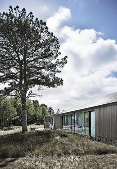 Sommerhuset med plads til drømme og meget lidt vedligeholdelse Modern Architecture, Habitats, Denmark, Plads, Exterior, Tanke, Building, Outdoor, Beautiful