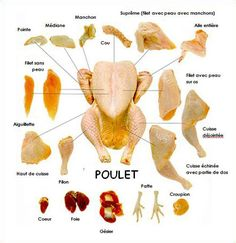 How to Cut Up or Bone a Whole Chicken: FREE PDF's . might be a great educational tool 1 day gerichte meat cuts dishes loaf recipes English Tips, English Study, English Words, English Lessons, English Grammar, Learn English, English Fun, Food Vocabulary, English Vocabulary