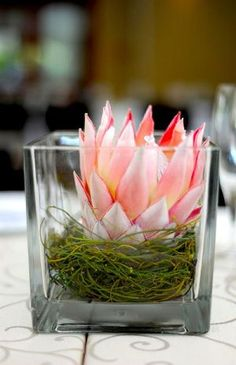 Protea Wedding Decor Ideas