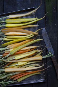 Uuniin mars! Kuta, Mars, Fish, Vegetables, March, Vegetable Recipes, Veggie Food, Veggies, Ichthys