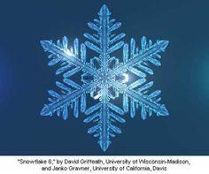 """Snowflake Model 8,"" by David Griffeath (University of Wisconsin-Madison) and Janko Gravner (University of California, Davis)"