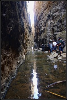 This is how your walk is going to be....even now in this summer, the valley has water till your knees.