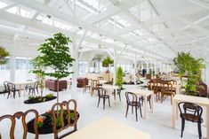 Architects integrate a modern garden in a greenhouse