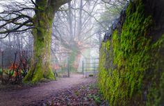 Spiers Park, Beith, Scotland
