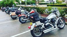 Girls only weekend road trip celebrating International Female Ride Day 2019 Eden Nsw, Street Bob, Harley Davidson Street, Weekends Away, Biker Chick, Together We Can, Weekend Getaways, Touring, Photo Galleries