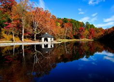 Forest Hill Park, Richmond, Virginia. Spent many Saturdays here in my youth.