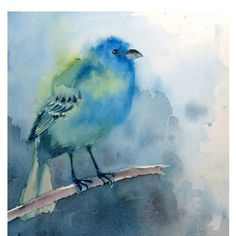 """Indigo Bunting"" Backyard Bird Series No. 1 by Nancy LaBerge Muren  San Francisco, California, United States"