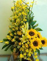 Dien hoa sinh nhat, gio hoa dep giỏ hoa theo tông màu vàng được kết hợp với nhiều loại hoa, hoa hoa hướng dương, hoa hồng vàng..tạo nên giỏ hoa đẹp. http://www.dienhoa360.com/