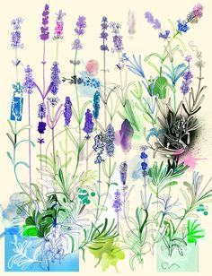 A beautiful drawing from Hennie Haworth.  Remember to be grateful, for all things beauty.