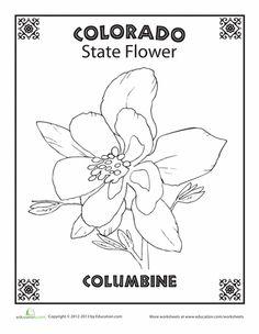Worksheets: Colorado State Flower