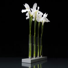This magnetic vase moves to form changeable designs, whether using exotic flowers or simple grasses (alternate base) $98
