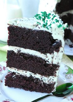 Mint chocolate chip layer cake.  It looks pretty and delicious!