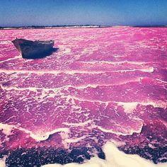 "Comment: noish_one_alazzbate said ""#lacrose#senegal#pinkwater#paysage#magique"""