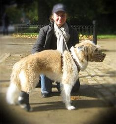 AS you can see I really enjoy my work - This a great person who knows a lot about healing animals & pets You Can See Me, Animal Care, Heart And Mind, Pet Care, Healing, Pets, Animals, Animales, Animaux