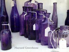 *Maynard Greenhouse: Brimfield 2012... beautiful purple bottles
