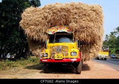 Overloaded truck carrying hay, Kerala, India© FotoFlirt / Alamy