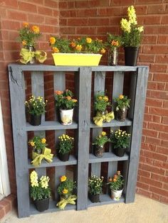 Pallet Idea for displaying your blooming plants--- hang on the back patio to add color