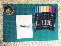 My desk with mom's colored Tombo pens and a small succulent!