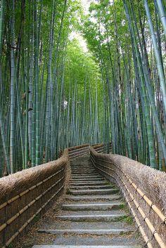 Arashiyama - stunning walk up steps to graveyard in this beautiful temple