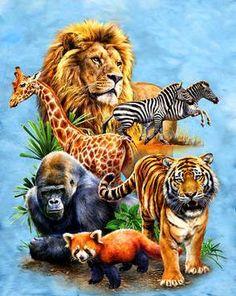 Anime animals, jungle animals, animals and pets, baby animals, wild animals Anime Animals, Jungle Animals, Cute Baby Animals, Animals And Pets, Wild Animals, Majestic Animals, Animals Beautiful, Animal Paintings, Animal Drawings