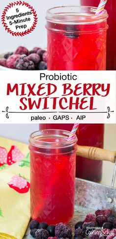 Easy and tasty Probiotic Mixed Berry Switchel has just 5 ingredients and a prep! Probiotic Drinks, Alcoholic Beverages, Low Carb Sweeteners, Mixed Berries, Fermented Foods, Summer Drinks, Healthy Drinks, Healthy Treats, Healthy Smoothies