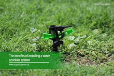 An efficient sprinkler system for Mississauga homes and properties prevents overwatering and keeps lawns and plants healthy; call Augusta Green Sprinklers to learn more about our services. Green Lawn, Green Grass, Water Sprinkler System, Best Compost Bin, Irrigation Controller, Sprinkler Heads, Water Efficiency, Lawn Sprinklers