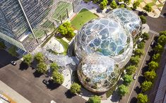the Amazon domes will feature a geometrically organic pattern and will reach a height of 95 feet