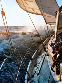 Great photo along the rail of a sailboat while sailing some fairly rough water. The crew no doubt was having a blast, it must have been so much fun! Sailing Cruises, Sailing Ships, Le Havre, Sail Away, Set Sail, Tall Ships, Pirates Of The Caribbean, Adventure Is Out There, Belle Photo