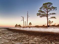 Holiday Campground Panacea Fl Florida