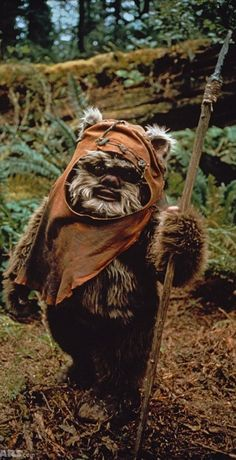 Star Wars - Episode VI: The Return of the Jedi's Ewoks My very favourite Starwars Character