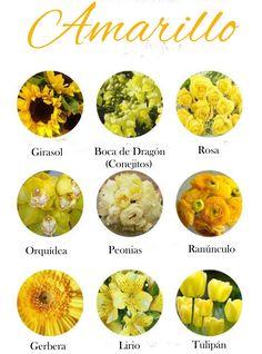 Flores de color amarillo. Yelow flowers.