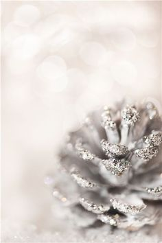 #christmas decoration #DIY glittery pinecones