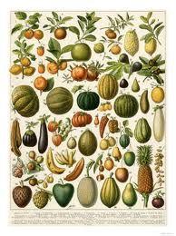 botaniese groente kuns