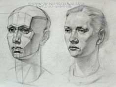 Image result for planar drawing of nose and mouth