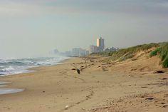 Playa La Devesa. Más info. http://lamejorplaya.es/guia/playa-la-devesa/