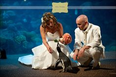 Florida Aquarium Wedding | Destination Wedding Photography Weber Photography Blog
