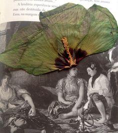 @F Rezende / Colagem de flor seca sobre livro