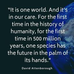 Collection of famous and thought-provoking quotes on plastic pollution with images. Includes quotes from experts such as David Attenborough. World Quotes, Life Quotes, Attitude Quotes, Motivational Picture Quotes, Inspirational Quotes, David Attenborough Quotes, Climate Change Quotes, Environment Quotes, Diving Quotes