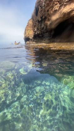 When the water is clear enough to kayak over, if feels like you're also snorkeling through it #channelislandsnationalpark National Park Tours, National Parks, Ocean Photography, Travel Photography, Sea Video, Adventure Company, Channel Islands National Park, California Destinations, Ocean Creatures